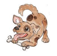 chiński zodiak - pies