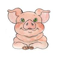 chiński zodiak - świnia